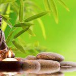 zen-a la une